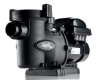 Jandy Pro Series VS FloPro 1.0 HP Pool Pump